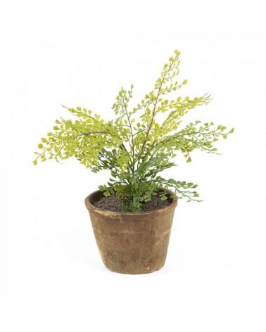 AA1081 FLOWER Artificial adiantum in pot.