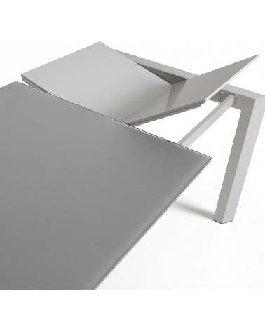 AXIS table 160(220)*90 grey
