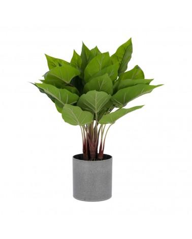 AA5704 Anthurium artificial plant 50 cm