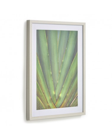 AA8136 - Lyn picture with green aloe 50 x 70 cm